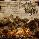 Ayodhya Burns