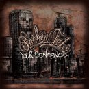 Your Sentence