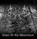 Echoes Of The Winterforest