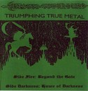 Triumphing True Metal
