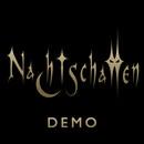 Demo Sommer 2011