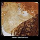 Samsara Blues Experiment