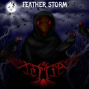 Feather Storm