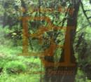 Exists and Entrances Vol.3