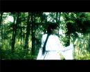 VIdeo 'Pulse'