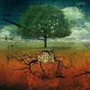 Gyvybes Medis