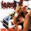 Porn Afterlife